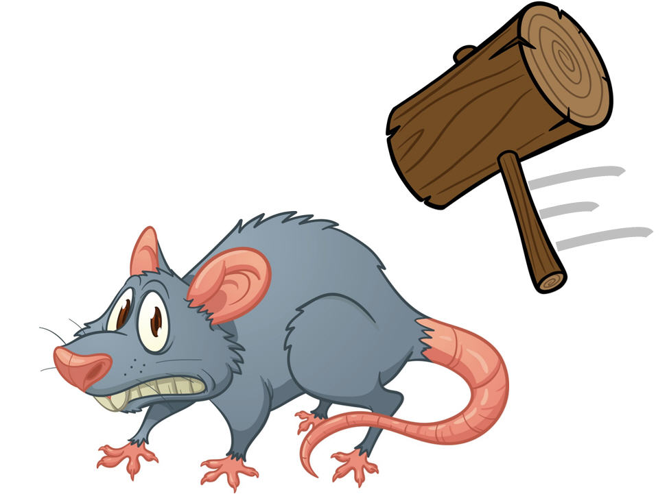 Do you have a Splat the Rat approach to resolving operational issues?