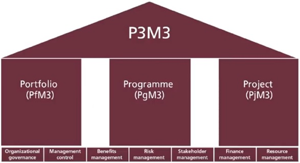 P3M Image