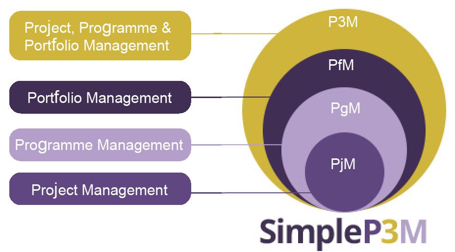 SimpleP3M3 Assessment