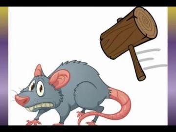 Splat the Rat